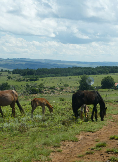 self-catering accommodation in Mpumalanga